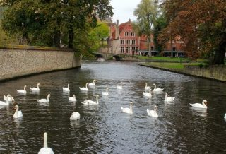 beautiful bruges travel blog roseanna sunley