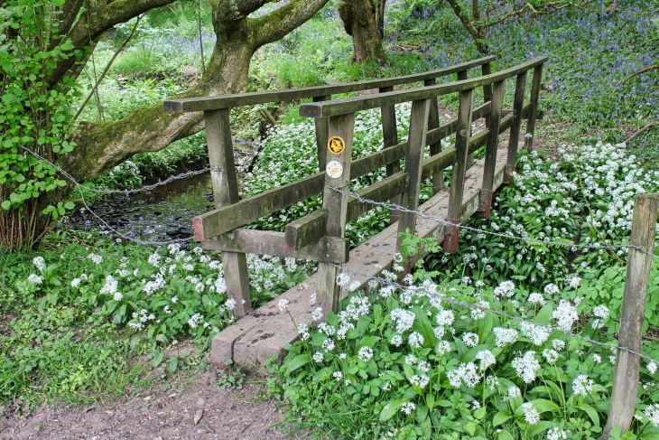 gritstone trail foot bridge roseanna sunley travel blog