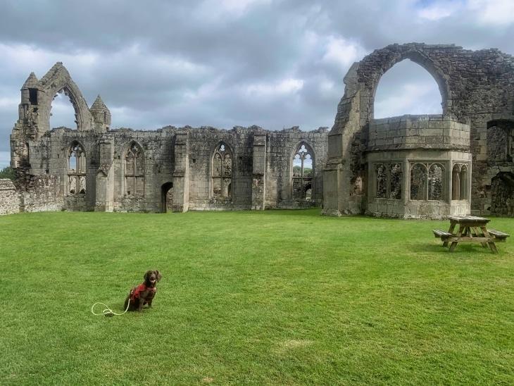 haughmond abbey roseanna sunley