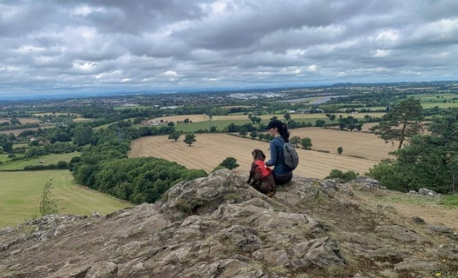 haughmond view point roseanna
